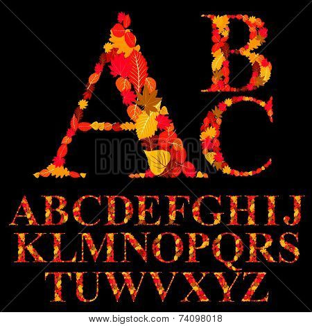 Font made with autumn leaves, natural alphabet letters set
