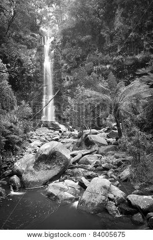 Erskine Falls Waterfall Black And White