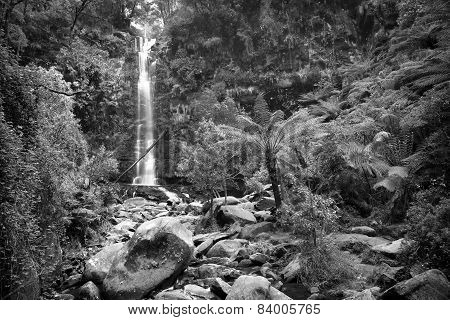 Erskine Falls Waterfall Black And White