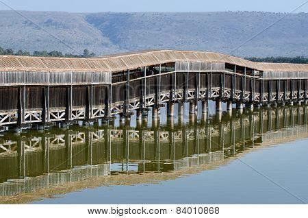 Israel Nature And Wildlife - Lake Hula