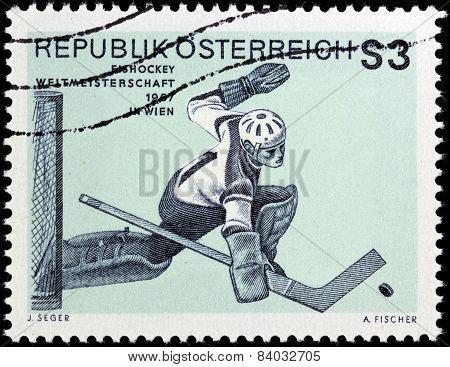 Ice Hockey Goaltender