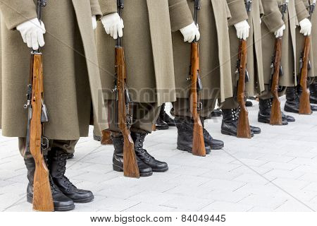 Bulgarian Troopers In Formation