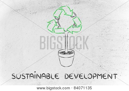 Tree With Foliage In Shape Of Recycle Symbol