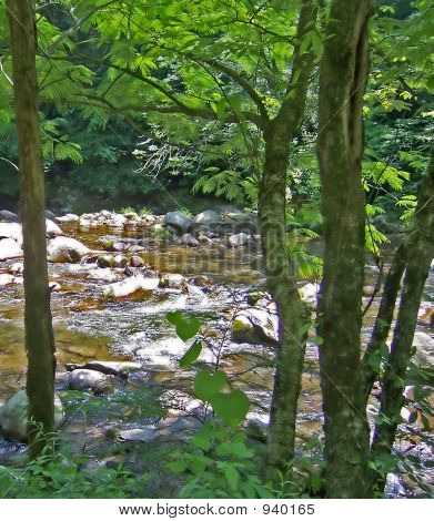 Country Brook