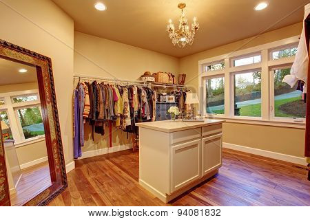 Large Walk In Closet With Hardwood Floor.
