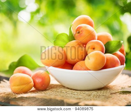 Apricot. Ripe Organic Apricots with leaves on a white wooden table over green nature blurred background. Orchard