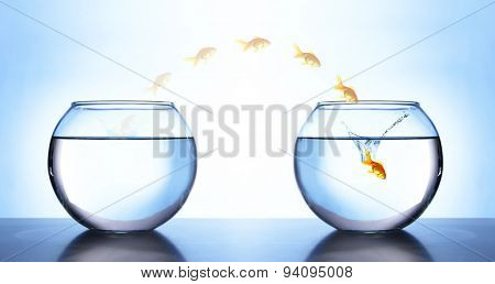 Goldfish jumping from aquarium to another, on light blue background