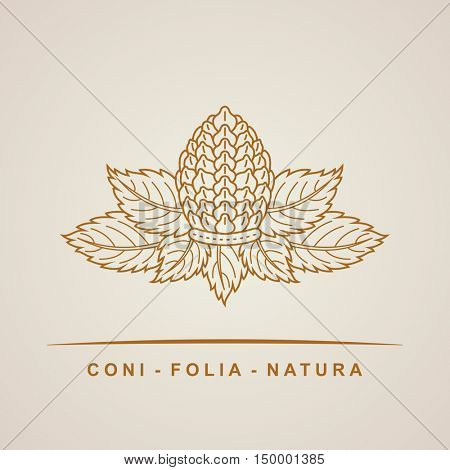 Vector pine cone emblem. Outline leaves nature symbol, concept for organic shop. Abstract design element, logo design template