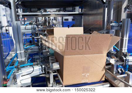 Automatic cardboard box erector machine. Cardboard package box packing machine.