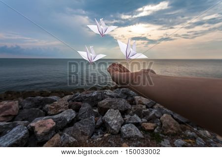 Hand of woman and origami birds (Origami Crane) on a background of sea and sky with silhouette sky freedom concept.