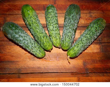 Five big beautiful green cucumber on a wooden board prepared for a vegetarian meal. Vegetables are laid out like a crown.