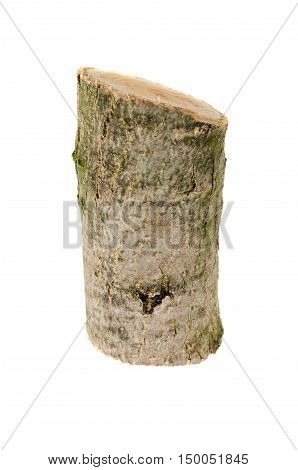 Wooden Stump Isolated On The White Background.