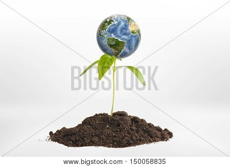 Close-up planet Earth on green sprout growing from the ground. Environmental issues. Natural resources. Ecosystem.