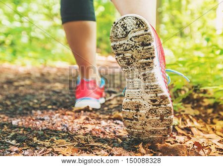 Female Jogger On A Forest Trail