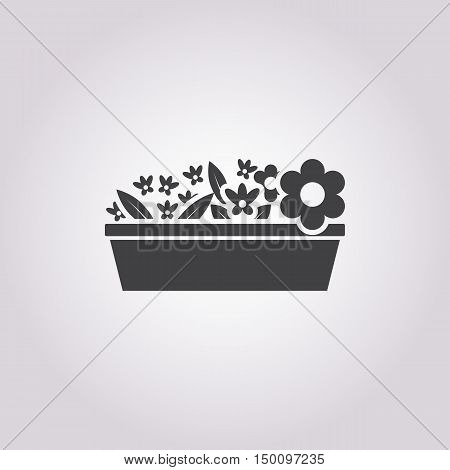 flowerpot icon on white background for web