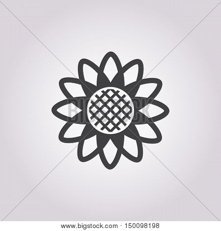 sunflower icon on white background for web