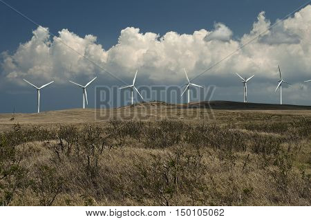 Wind power plant at the Island of Hawaii