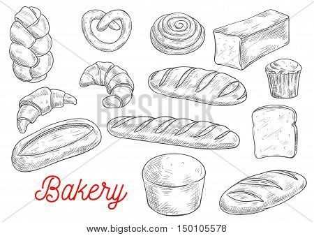 Sketched wheat bread, croissant and baguette, cupcake, cinnamon roll, toast and ciabatta, pretzel, braided bun and long loaf. Bakery and pastry shop food packaging design
