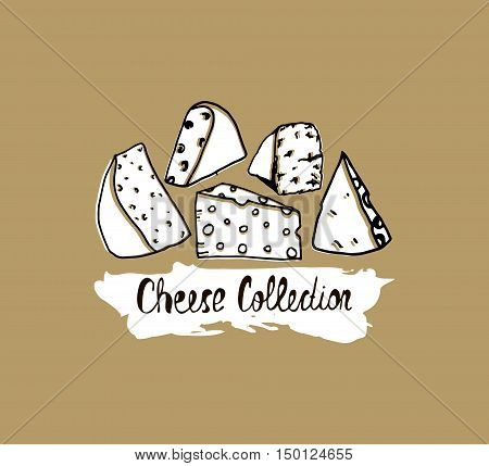 Hand drawn cheese background. Vector illustration of cheese in vintage style. Cheese banner.