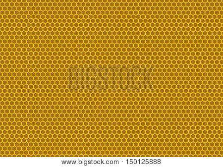 Bee's Honeycomb Illustration