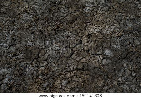 Colorful dry saline soil surface with salt stains and deep black cracks