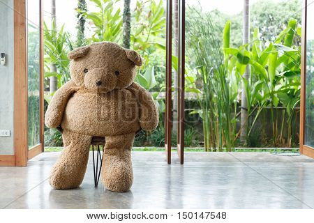 Interior Design, Doll Bear Sitting On Chair Furniture Modern Style In Living Room With Natural Garde