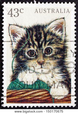 AUSTRALIA - CIRCA 1991: a stamp printed in Australia shows Kitten Pet Animal circa 1991