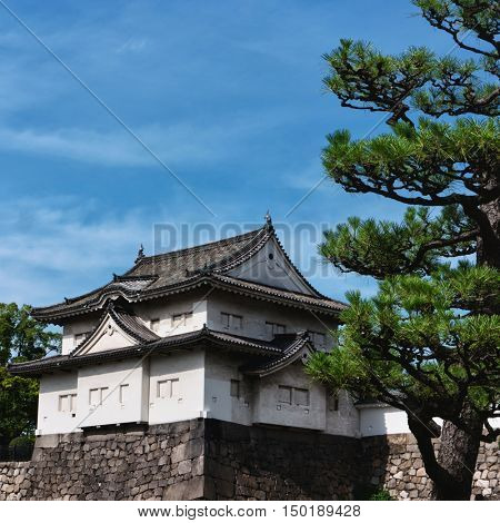 Osaka Castle with shaped tree in sunny day. June 2016
