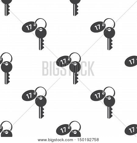 key with keychain icon on white background for web