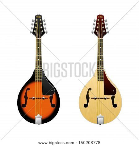 Realistic vector Mandolin isolated on white mandolin Folk music instrument Mini-guitar