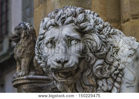 Medici Lions From Florence, Italy