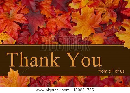 Thank You message Some fall leaves with text Thank You from all of us