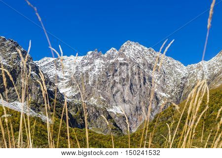Rock peak with white snow and golden spica in autumn landscape