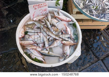 The trawler is a mix of small-denomination fish used for frying. It named after the fishing boat which is a typical fishing boat trawling commonly used by Italian marines
