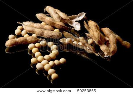 Soybeans Forming Ruble Symbol. Soybean Market. Agriculture Soybean Pods.