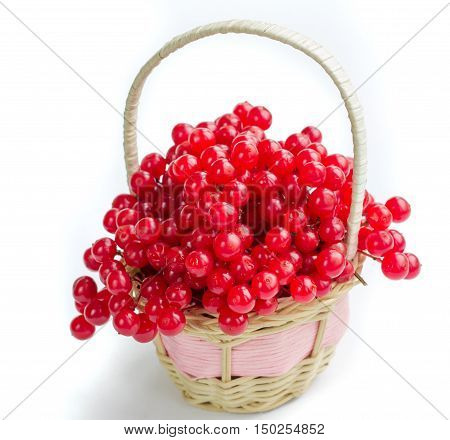 Red Berries Of Guelder Rose In Small Wicker Basket Isolated