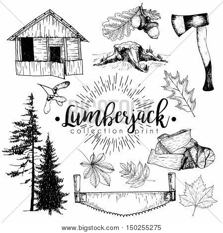 Vectro set of timber print collection. Cozy cabin stamp axe pine trees firewoods saw leaves and acorns. Hand drawn vintage style. Trendy hipster lumberjack illustration.