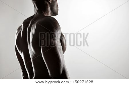 Shirtless Male Model With Muscular Back