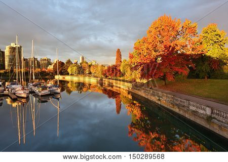 Autumn Colors alone the Sea Walk in Stanley Park Vancouver BC