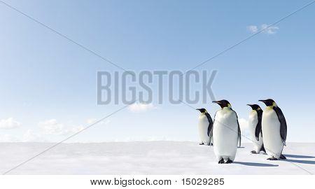 Emperor Penguins in Antacrctica poster