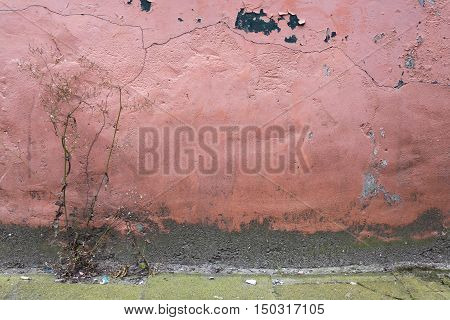 part of old wall with pink wheathered paint on stucco full of cracks