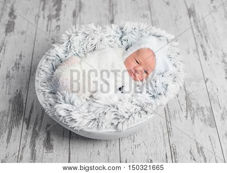 lovely swaddled newborn baby lying with toy in basket on fluffy blanket