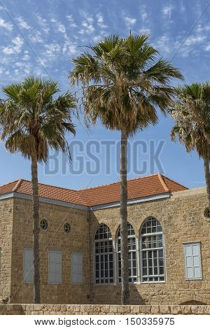 The ancient building of the former Carmelite monastery in Haifa, three palm trees and blue sky.