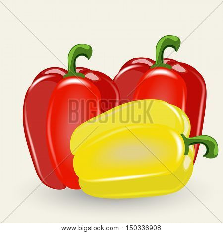 Pepper vector illustration. Pepper isolated on a white background. Red and yellow peppers