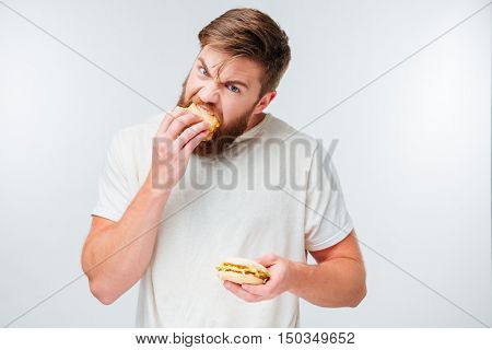 Excited bearded man greedily eating hamburgers isolated on white background