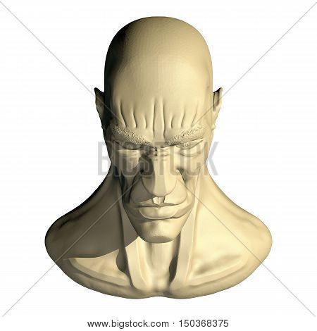 Male three dimensional human head. 3d cartoon model of artificial head. Front top view.