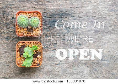 Closeup group of cactus in plastic brown pot on wood desk textured background in top view with come in we're open sentence for people know shop status