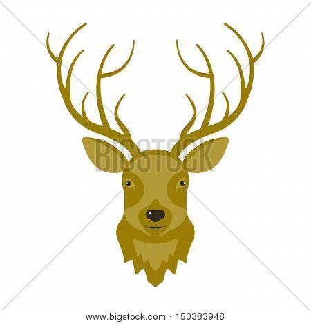 Illustration of reindeer head in modern flat design. Hunters trophy of Cervine muzzle. Shot down deer. Vector eps