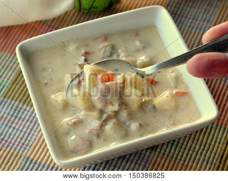 Clam Chowder: Hand holding spoon dipping into bowl of New England style clam chowder. Viewed from above.