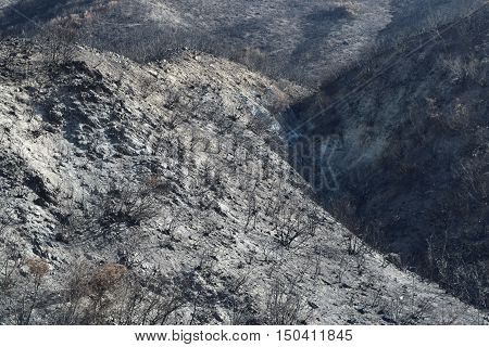Charcoaled landscape with a burnt chaparral woodland on a mountain caused from a wildfire taken in Cajon, CA
